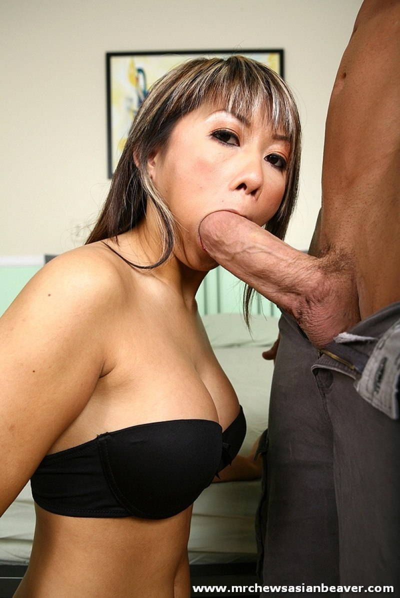 Abbie Lee MrChewsAsianBeaver Asian Porn pictures